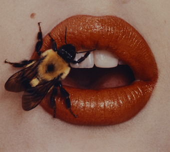 Irving Penn, Bee. New York, 1995