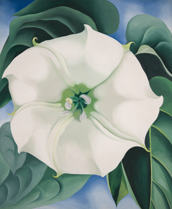 Georgia O'Keeffe 1887-1986 Jimson Weed, White Flower No. 1 1932